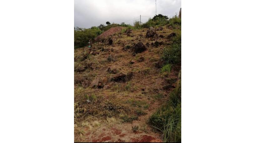 vendo-terreno-en-colonia-herederos-lopez-big-3