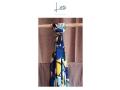 panoletas-accesorios-para-tu-outfit-disenos-exclusivos-small-1