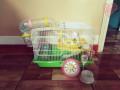 jaula-para-hamster-small-0