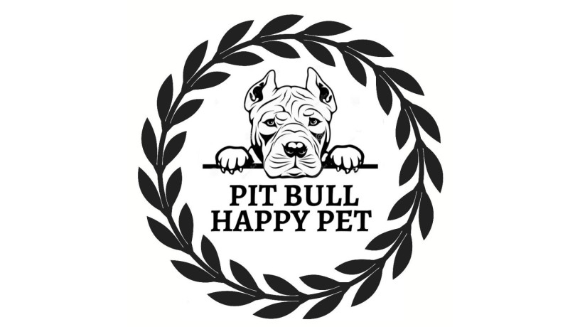 ventas-de-american-pitbull-terrierapbt-big-0
