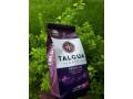 cafe-talgua-small-0