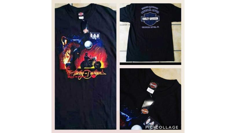camiseta-harley-davison-big-0