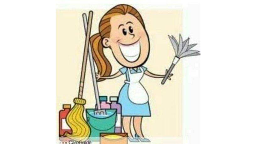 agencia-de-limpieza-big-0