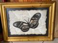 cuadro-de-mariposa-de-cuero-small-0