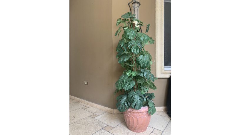 plantas-artificiales-big-3