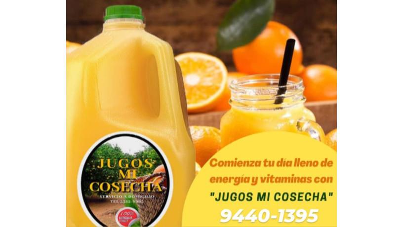 jugo-de-naranja-100-natural-big-0
