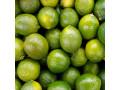 jugosos-limones-persa-small-0