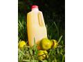 jugos-naturales-small-0
