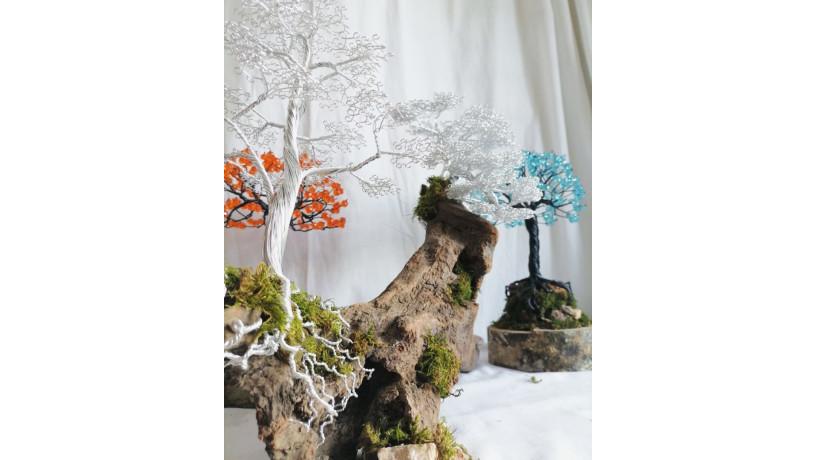 bonsai-big-2