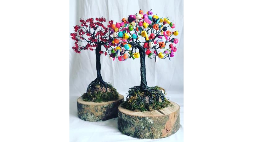 bonsai-big-5