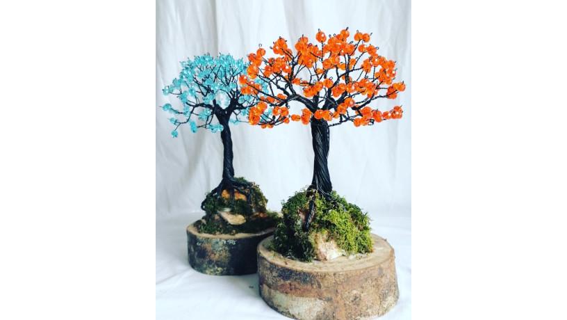 bonsai-big-3