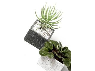 Maceteras de concreto hechas a mano