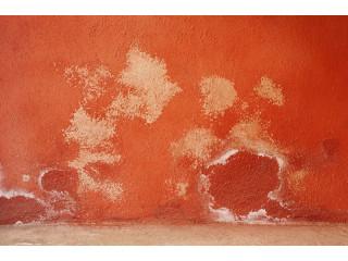 Kit de pintura para humedad en las paredes