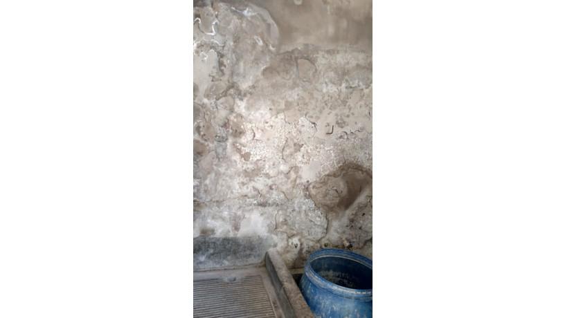 kit-de-pintura-para-humedad-en-las-paredes-big-2