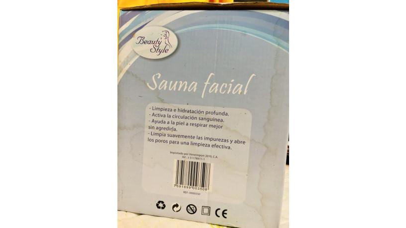 sauna-facial-big-3