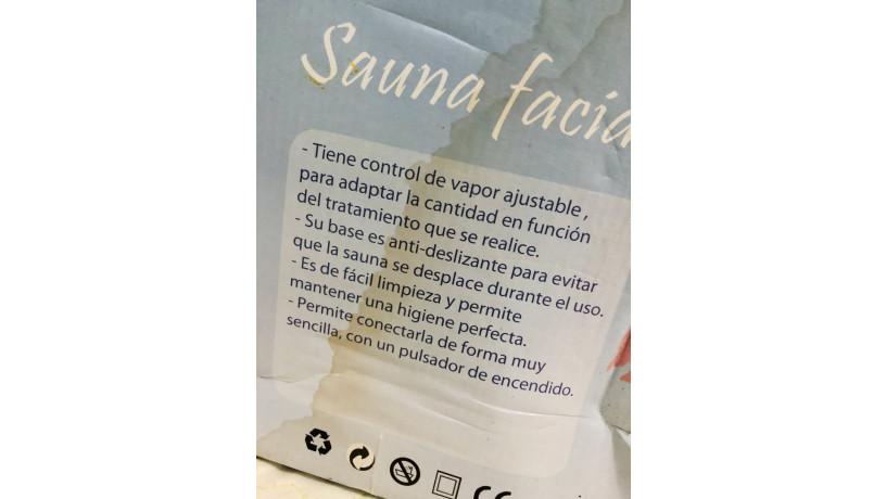 sauna-facial-big-2