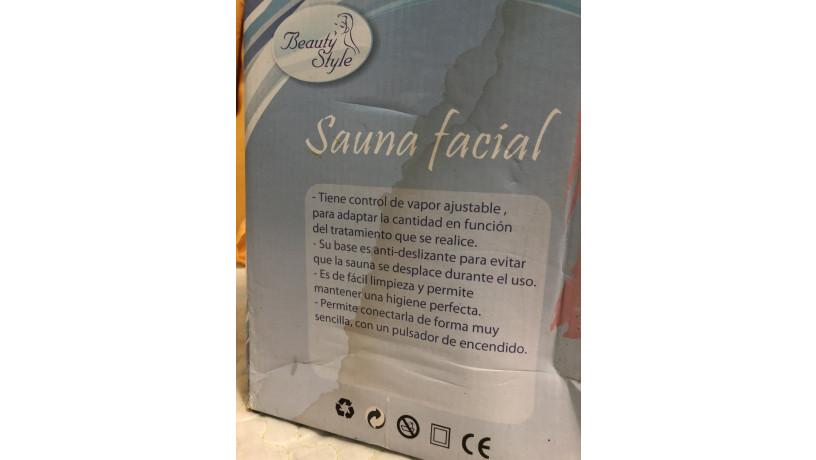 sauna-facial-big-1