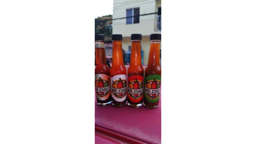 chiles-mexicanos-salsas-big-1