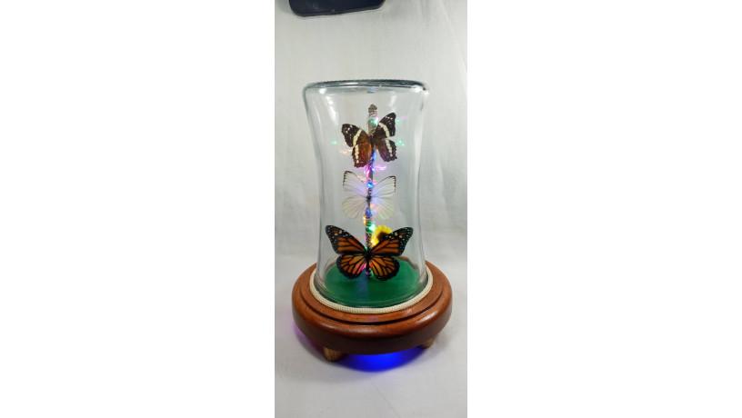 lamparas-con-mariposas-reales-big-0